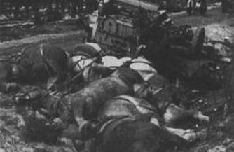 Битва на уничтожение у деревни Хальбе