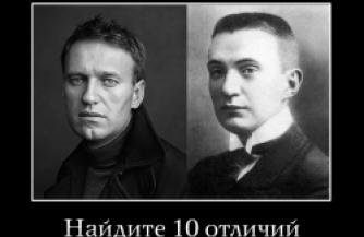 Навальный стух