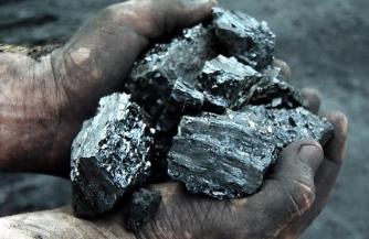 Зверинец оставляют без угля