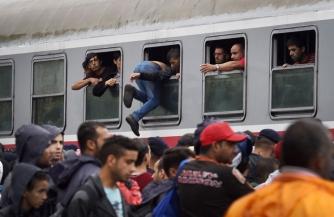 Миграционный пакет-2