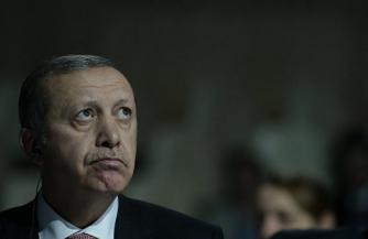 Морковка для Эрдогана