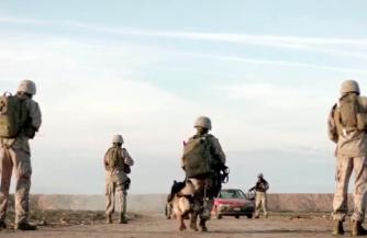 Военный позор Голливуда