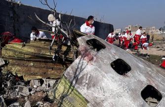 Коротко о бурлении вокруг упавшего под Тегераном Боинга
