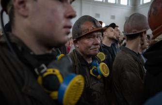 Витренко послал шахтеров собирать клубнику