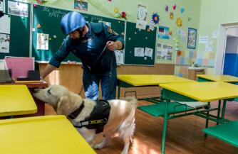«Минирование» донецких школ